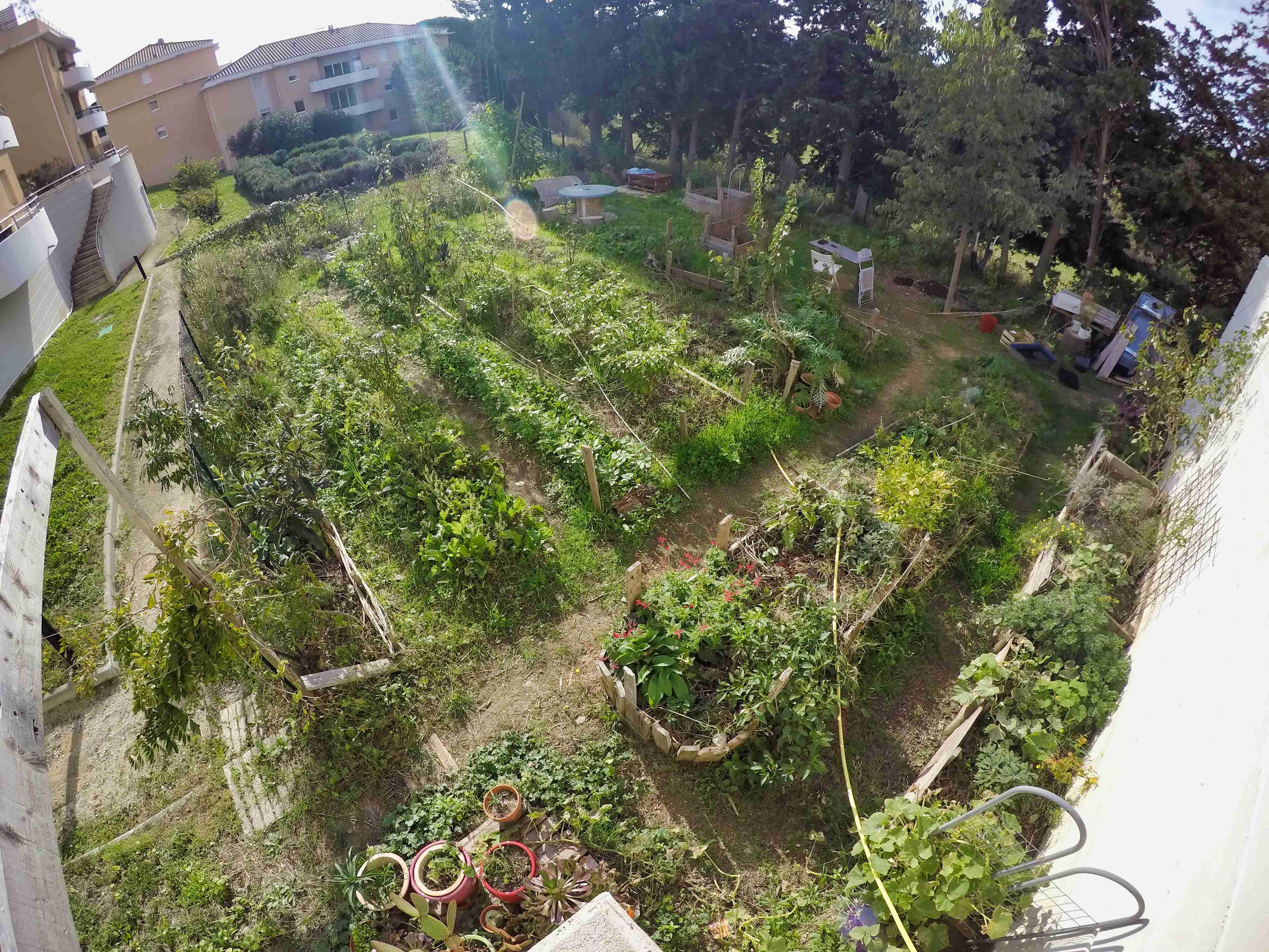 Photo du jardin de Villamont.